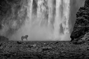 Skogafoss Falls ~ Renee Lowery