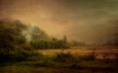 Sanctum ~ Sharon Brown Christopher
