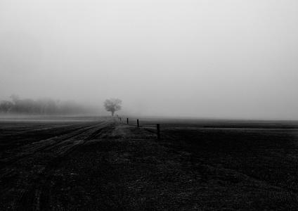 Sod Farm ~ Durwood Edwards