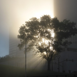 Emily Passino, Morning Walk, Downtown Nashville