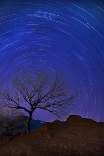 Starry Night in New Mexico, Mary Rice