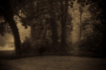 Denny Adcock - Warner Rain