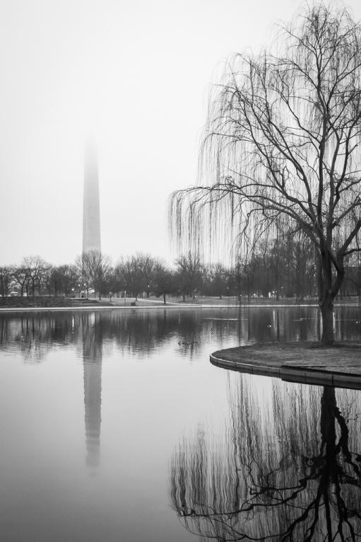 Jen Vogus, Constitution Gardens