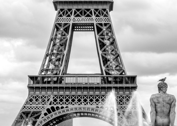 Michel Claire Bayer, Crush on Paris