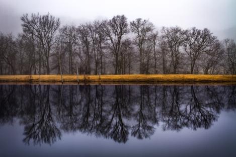 Richard Barrow, Winters Reflection