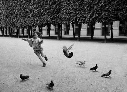 Bill Lindsley, Taking Flight