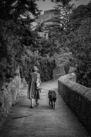 Monte Arnold, A Walk in Provence