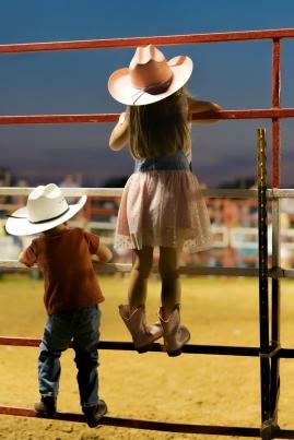Susan Harrell, Rodeo Nights