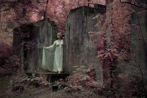 David Morel, Ghost Bride