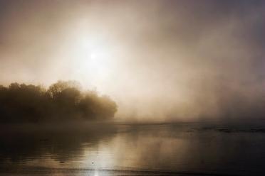 Robin Conover, Misty Morning, Radnor Lake